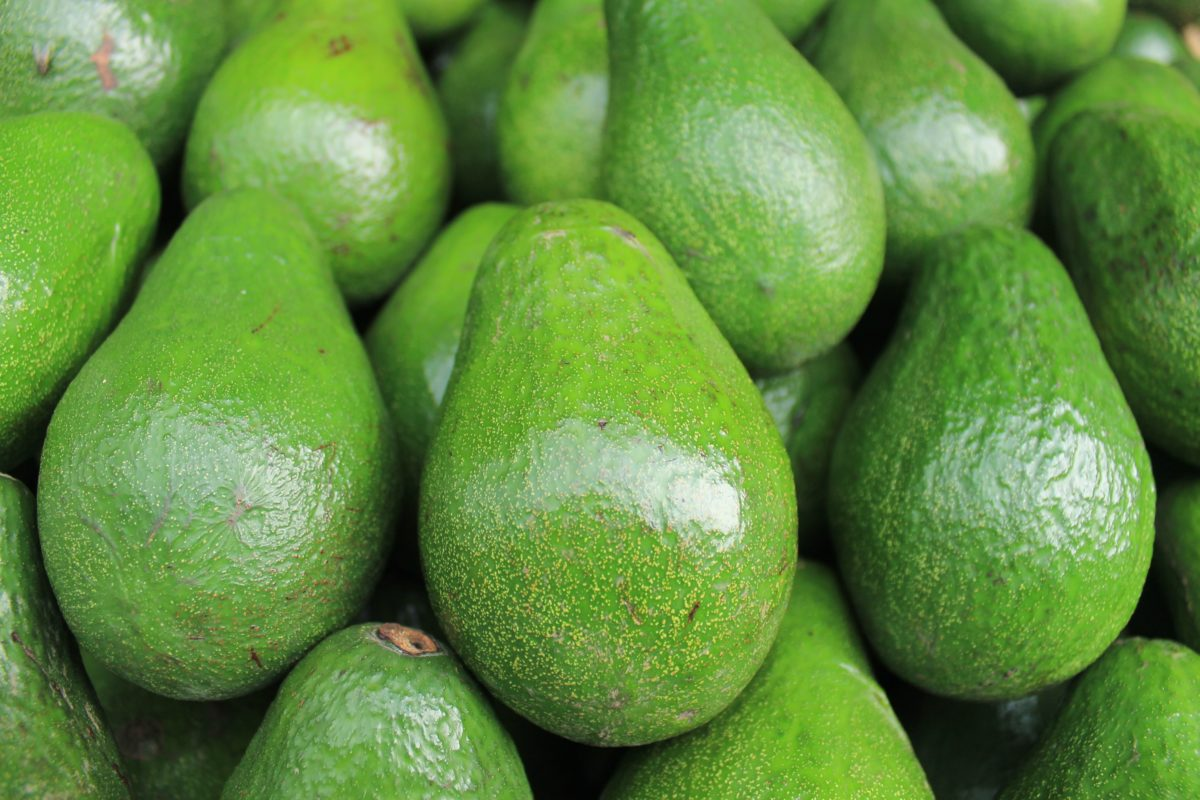 Benefits of Avocadoes
